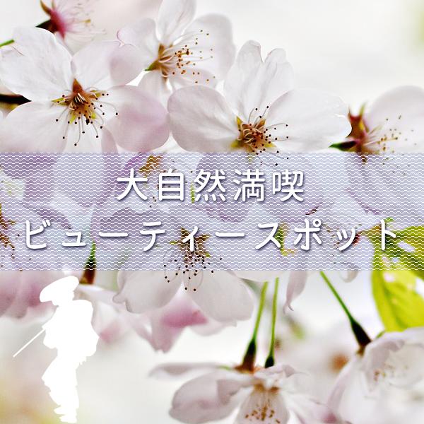 中山道大湫宿 ビューティースポット 大湫町コミュニティ推進協議会