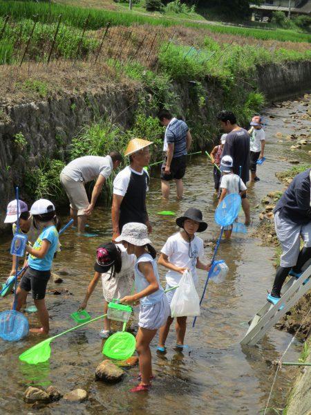 川の生き物調査のために足又川に集まった子どもたち