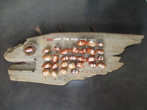 ドングリの実でつくった万年カレンダー